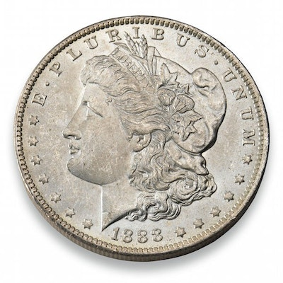 Morgan Dollar Silver Coin
